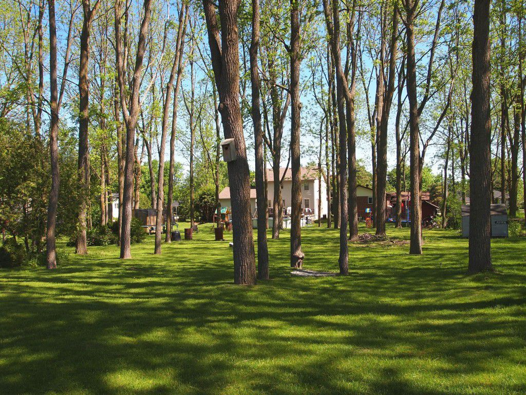 Photo 5: Photos: 106 Seventh Street in Beaverton: Durham Freehold for sale (Brock)  : MLS®# N3510432