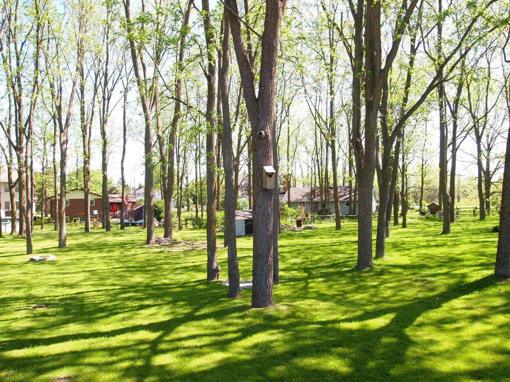 Photo 7: Photos: 106 Seventh Street in Beaverton: Durham Freehold for sale (Brock)  : MLS®# N3510432