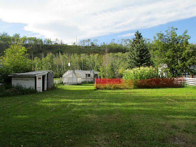Main Photo: 10105 ROBISON Avenue: Hudsons Hope Home for sale (Fort St. John (Zone 60))  : MLS®# N230340
