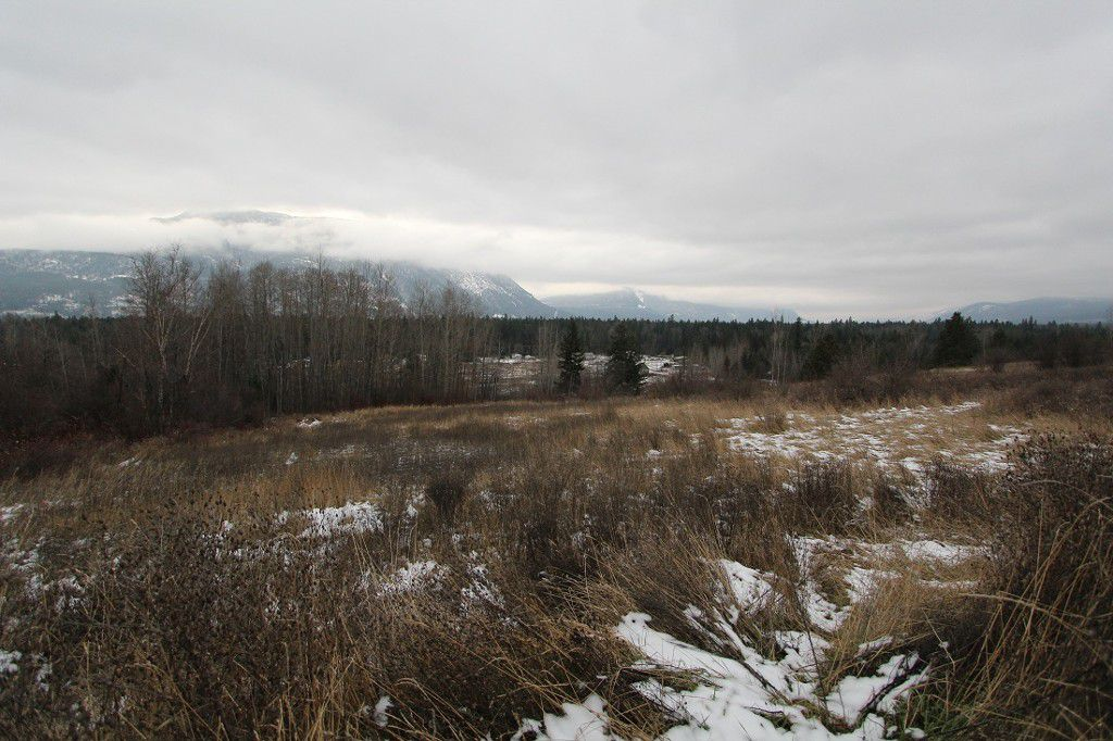 Main Photo: 37 2481 Squilax Anglemont Road in Lee Creek: North Shuswap Land Only for sale (Shuswap)