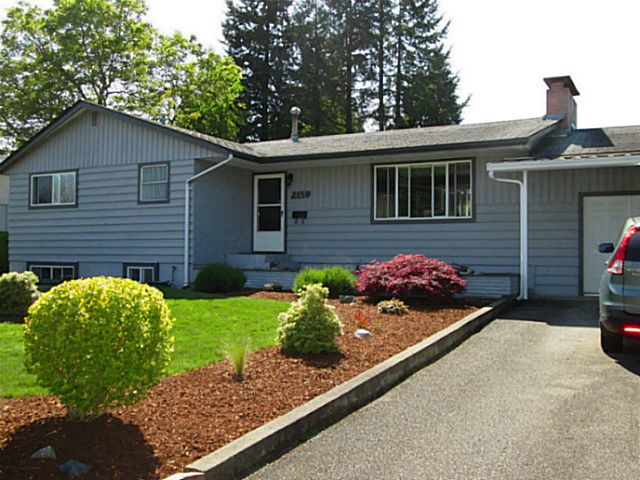 Main Photo: 2159 Wilerose Street in Abbotsford: Central Abbotsford House for rent