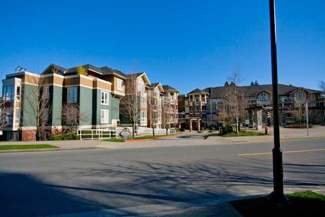 Main Photo: # 405 14 E ROYAL AV in New Westminster: Fraserview NW Condo for sale : MLS®# V1105870