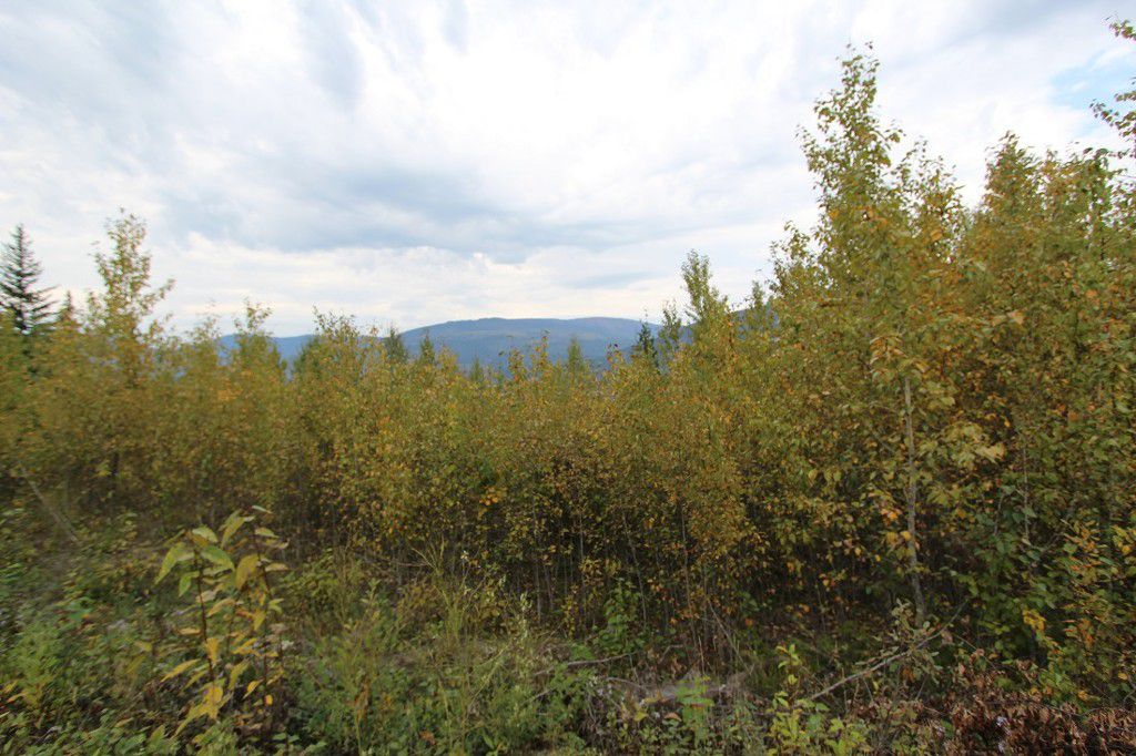 Main Photo: Lot 82 Sunset Drive: Eagle Bay Land Only for sale (Shuswap)