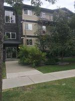 Main Photo: 3 11827 105 Street NW in Edmonton: Zone 08 Condo for sale : MLS®# E4209553
