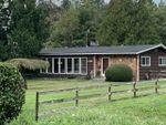 Main Photo: 11689 248 Street in Maple Ridge: Cottonwood MR House for sale : MLS®# R2500740