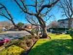 Main Photo: 107 2125 Oak Bay Ave in Oak Bay: OB South Oak Bay Condo for sale : MLS®# 833929