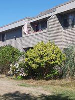"Main Photo: 204 3371 SPRINGFIELD Drive in Richmond: Steveston North Condo for sale in ""DOLPHIN COURT"" : MLS®# R2398238"