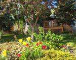Main Photo: 11720 University AV NW in Edmonton: Zone 15 House for sale : MLS®# E4201533