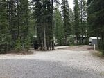 Main Photo: 13 Timber Alley: Rural Mountain View County Land for sale : MLS®# A1016491