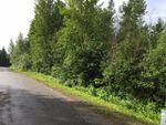 Main Photo: LOT A VALHALLA Road in Quesnel: Quesnel - Town Land for sale (Quesnel (Zone 28))  : MLS®# R2473761