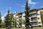 Main Photo: 515 237 YOUVILLE Drive E in Edmonton: Zone 29 Condo for sale : MLS®# E4204020
