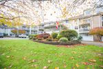 "Main Photo: 311 22514 116 Avenue in Maple Ridge: East Central Condo for sale in ""FRASER COURT"" : MLS®# R2322303"