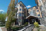 Main Photo: 202 8730 82 Avenue NW in Edmonton: Zone 18 Condo for sale : MLS®# E4157871