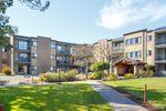Main Photo: 113 1870 McKenzie Ave in VICTORIA: SE Gordon Head Condo Apartment for sale (Saanich East)  : MLS®# 838803