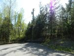 """Main Photo: 9610 CEDAR Street in Mission: Mission BC Land for sale in """"Cedar Valley"""" : MLS®# R2425659"""