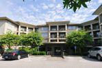 "Main Photo: 219 12238 224 Street in Maple Ridge: East Central Condo for sale in ""Urbano"" : MLS®# R2341372"