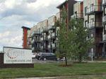 Main Photo: 304 320 AMBLESIDE Link in Edmonton: Zone 56 Condo for sale : MLS®# E4161205