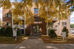 Main Photo: 202 11825 71 Street in Edmonton: Zone 06 Condo for sale : MLS®# E4216032