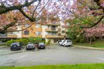 """Main Photo: 209 1720 SOUTHMERE Crescent in Surrey: Sunnyside Park Surrey Condo for sale in """"Capstan Way"""" (South Surrey White Rock)  : MLS®# R2384636"""