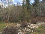 Main Photo: Lot 18A Folding Mountain Village: Rural Yellowhead Rural Land/Vacant Lot for sale : MLS®# E4201079