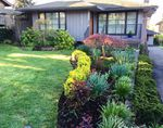 Main Photo: 2290 JEFFERSON Avenue in West Vancouver: Dundarave House for sale : MLS®# R2320860