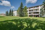 Main Photo: 309 1945 105 Street in Edmonton: Zone 16 Condo for sale : MLS®# E4208139
