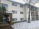 Main Photo: 204 10939 109 Street in Edmonton: Zone 08 Condo for sale : MLS®# E4224808