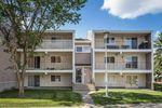 Main Photo: 3 3867 76 Street in Edmonton: Zone 29 Condo for sale : MLS®# E4204366