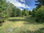 Main Photo: Picken Street in Westville: 107-Trenton,Westville,Pictou Vacant Land for sale (Northern Region)  : MLS®# 202018012