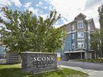 Main Photo: 327 10121 80 Avenue NW in Edmonton: Zone 17 Condo for sale : MLS®# E4199384