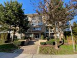"Main Photo: 215 22255 122 Avenue in Maple Ridge: West Central Condo for sale in ""MAGNOLIA GATE"" : MLS®# R2438136"