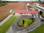 Main Photo: 23529 0 AVENUE in Langley: Campbell Valley Residential Detached for sale : MLS®# R2516396