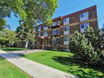 Main Photo: 302 10725 111 Street in Edmonton: Zone 08 Condo for sale : MLS®# E4210743