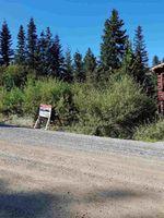 "Main Photo: 20856 SAKWI CREEK Road in Agassiz: Hemlock Land for sale in ""HEMLOCK VALLEY"" (Mission)  : MLS®# R2489608"