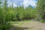 Main Photo: LOT 10 GLACIER VIEW Road in Smithers: Smithers - Rural Land for sale (Smithers And Area (Zone 54))  : MLS®# R2455376