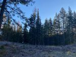 Main Photo: Lot 5 RED MOUNTAIN ROAD in Rossland: Vacant Land for sale : MLS®# 2455883