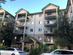 Main Photo: 114 11325 83 Street in Edmonton: Zone 05 Condo for sale : MLS®# E4202055