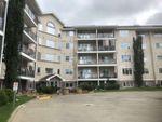 Main Photo: 519 261 YOUVILLE Drive E in Edmonton: Zone 29 Condo for sale : MLS®# E4208540