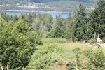 Main Photo: 113 Lee Ann Rd in Salt Spring: GI Salt Spring Land for sale (Gulf Islands)  : MLS®# 844842