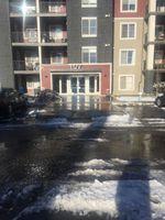 Main Photo: 109 107 WATT Common in Edmonton: Zone 53 Condo for sale : MLS®# E4135040