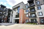 Main Photo: 206 1144 ADAMSON Drive in Edmonton: Zone 55 Condo for sale : MLS®# E4155529