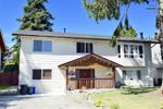 Main Photo: 20845 51B Avenue in Langley: Langley City House for sale : MLS®# R2481065