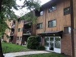 Main Photo: 208 8814 95 Avenue in Edmonton: Zone 18 Condo for sale : MLS®# E4203924
