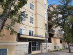 Main Photo: 504 10606 102 Avenue in Edmonton: Zone 12 Condo for sale : MLS®# E4130403