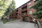Main Photo: 315 10514 92 Street in Edmonton: Zone 13 Condo for sale : MLS®# E4118345