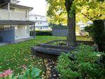"Main Photo: 116 12160 80 Avenue in Surrey: West Newton Condo for sale in ""LaCOSTA Green"" : MLS®# R2411641"