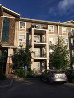 Main Photo: 1421 7339 SOUTH TERWILLEGAR Drive in Edmonton: Zone 14 Condo for sale : MLS®# E4161994