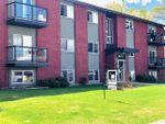 Main Photo: 202 7111 80 Avenue in Edmonton: Zone 17 Condo for sale : MLS®# E4193182