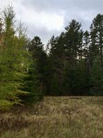 Main Photo: Lot Sweetland Road in Farmville: 405-Lunenburg County Vacant Land for sale (South Shore)  : MLS®# 202022943