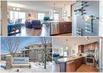 Main Photo: 426 6076 SCHONSEE Way in Edmonton: Zone 28 Condo for sale : MLS®# E4188066